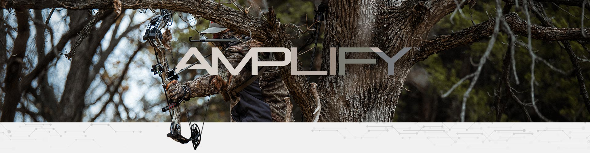 Amplify archery compound bow